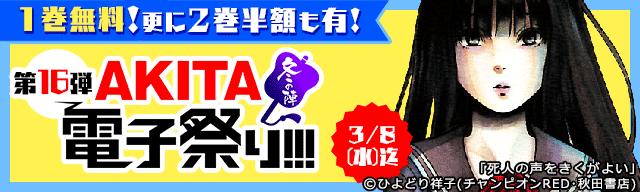 AKITA電子祭り 冬の陣 第16弾